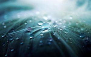 雨の写真(耐水圧)